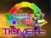 STEREO STAR, производственно-торговая компания Тюмень