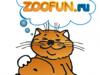 Zoofun.ru, интернет-магазин Тюмень